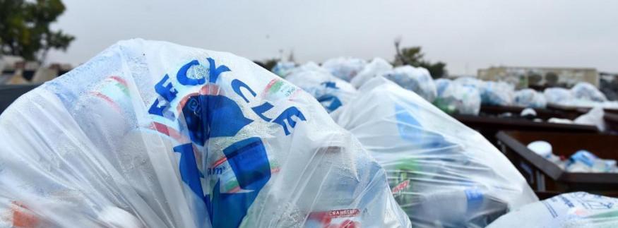 """لا للبلاستيك… مبادرة من """"Greenish"""" للحفاظ على البيئة في المعادي"""