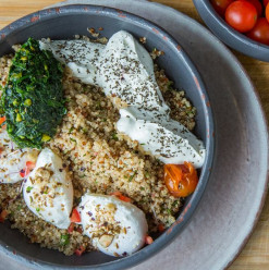 Your Comprehensive Guide to the Capital's Best Healthy Dishes