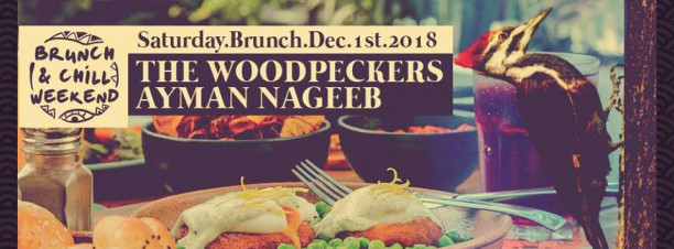 Saturday Brunch n Chill ft. The Woodpeckers / Ayman Nageeb @ Cairo Jazz Club 610