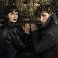 فيلم Fantastic Beasts: The Crimes of Grindelwald: السحر