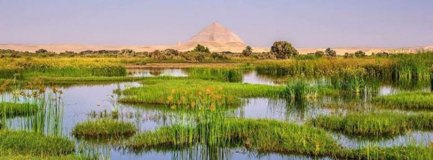 بركة الملك فاروق… مكان جميل لكنه مُهمل في دهشور