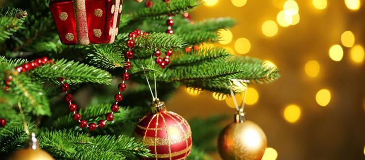 اعرف أهم أماكن بيع شجرة الكريسماس في القاهرة
