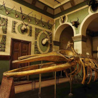 The Agricultural Museum in Cairo: Everything You Need to Know About the World's Very First Agricultural Museum