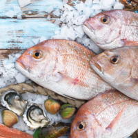 Kadoura: Best Seafood Experience in Cairo?