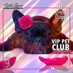 Ladies Night ft. DJ Doggy Dogg @ Bella Figura