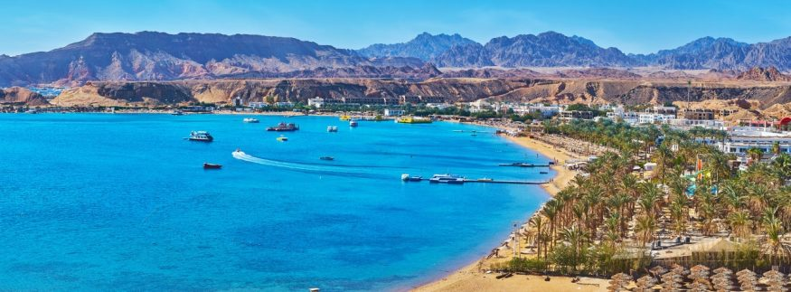 Freedom Music Is Bringing Ibiza to the Red Sea!