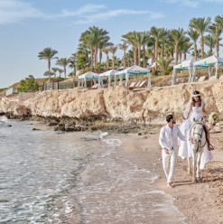 Four Seasons Resort Sharm El Sheikh Opens Its Doors to Host Your Dream Wedding