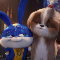 The Secret Life of Pets 2: Simple Is Much Better