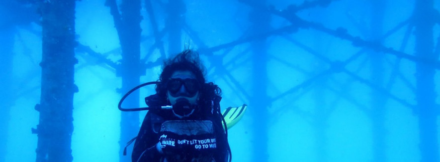 Sahl Hasheesh Divers Start a Campaign to Clean the Red Sea