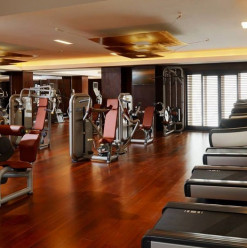 Check out the Fitness & Wellness Centres at the Sheraton Cairo Hotel & Casino