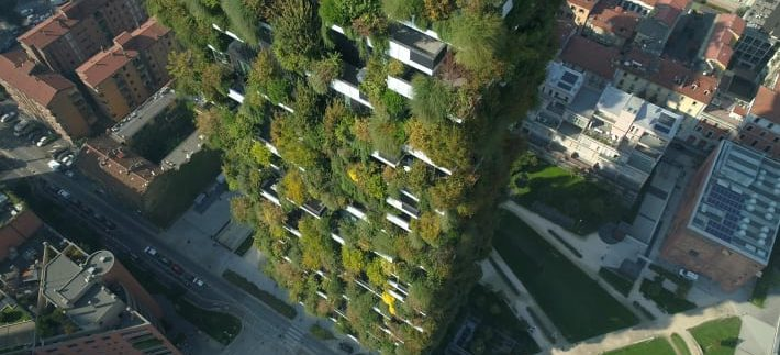 Egypt to Establish Vertical Forest Project in New Administrative Capital