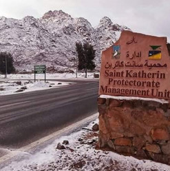 Pictures of South Sinai's Saint Catherine Covered in Snow Go Viral