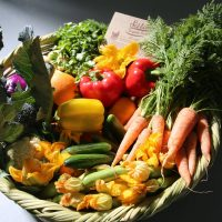 Five Online Outlets for Fresh Produce in Cairo
