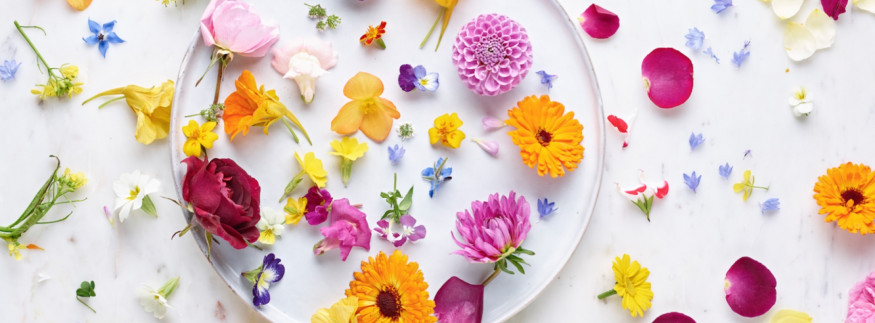 Edible Flowers in Cairo? Here's Where You Can Find them