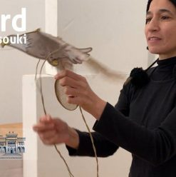 Hakawy Festival: 'The Bird' by Khadija El-Dessouky at AUC Tahrir