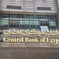 Central Bank of Egypt Limits Withdrawals and Deposits 