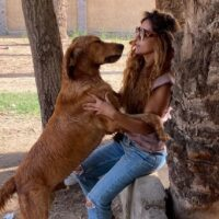 8 Animal Shelters in Egypt to Adopt Your New Furry Friend