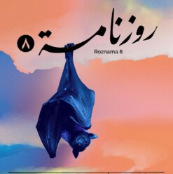 Roznama 8 at Medrar and Contemporary Image Collective (CIC)